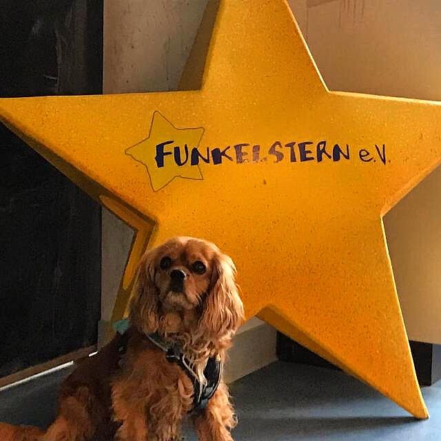 """Wir werden """"Funkelsterne – unser Engagement im Verein """"Funkelstern"""" in Mainz"""