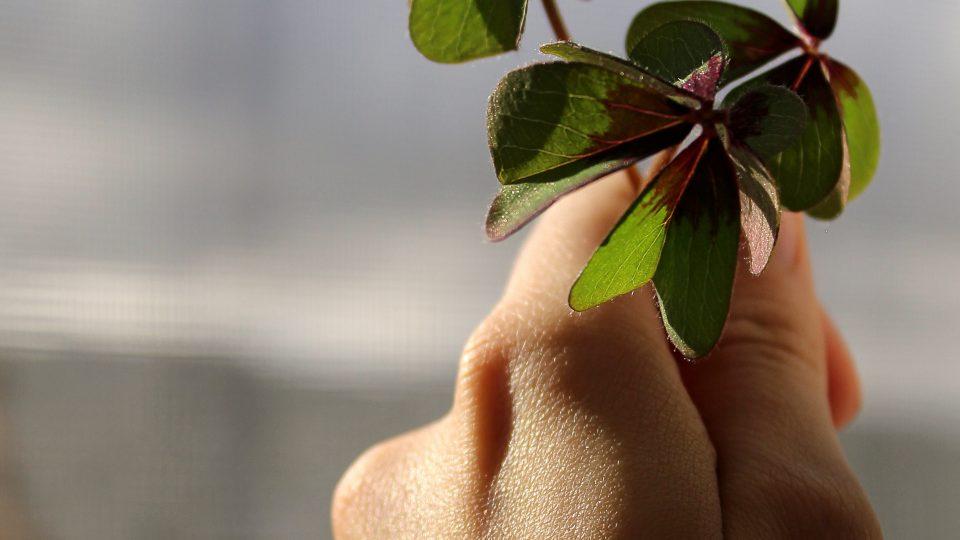 """Kann man Glück in der Schule lernen? – Teilnahme an einer Fortbildung zum """"Unterrichtsfach Glück"""
